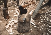 stump with axes inside of it surrounded by wood shavings and cuttings